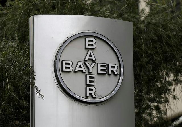 Bayer0814.jpg