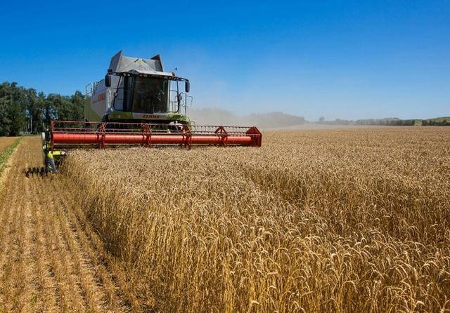 Ukraine-Agriculture.jpg