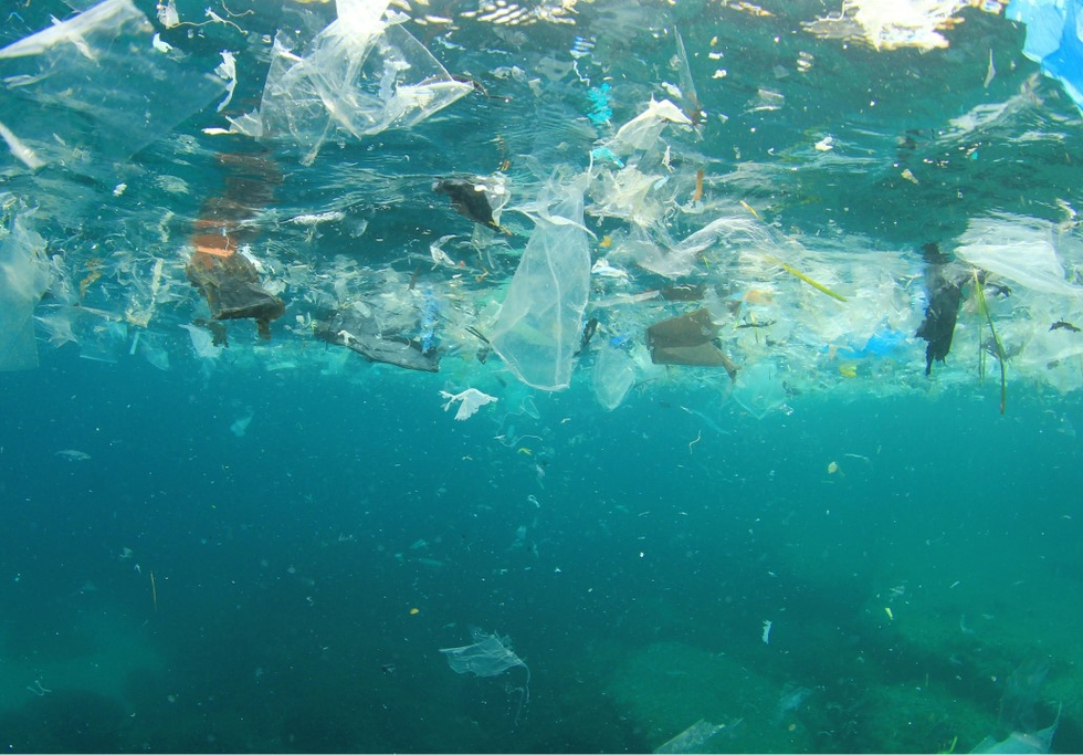Plastic pollution in oceans