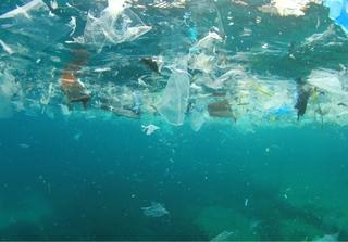 Plastic pollution in oceans