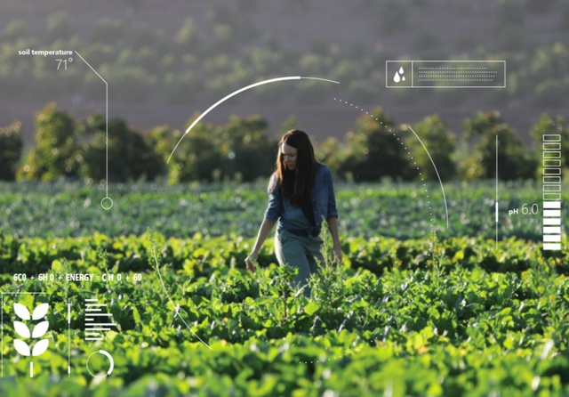 The positive impact of AI on environmental issues