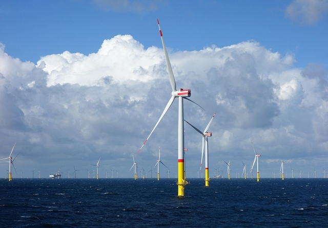 Arkona offshore wind farm. Credit: Ein Dahmer / Wikimedia