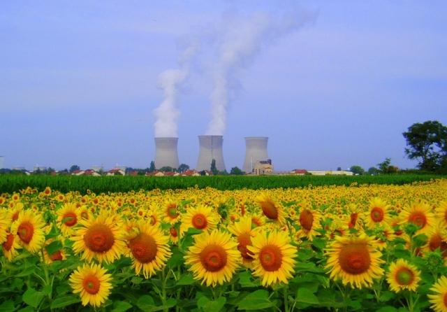 Bugey nuclear power plant, Saint-Vulbas, France. Credit: Jessica Gardner / Flickr