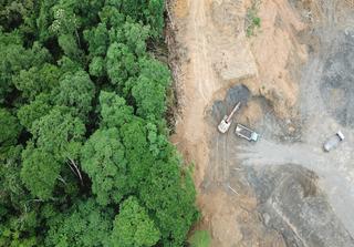 Amazon deforestation. Credit: Rich Carey / Shutterstock