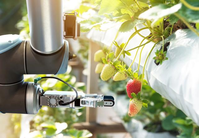 Greenhouse robotics .png