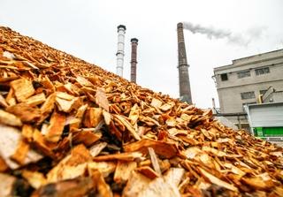 Biomass energy plant in Kaunas, Lithuania. Photo: Rokas Tenya / Shutterstock